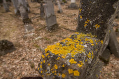 Headstone Stock Image