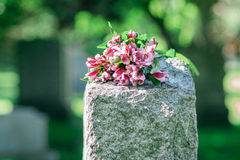 Headstone in Cemetery Royalty Free Stock Images