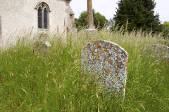 Headstone in Overgrown Church Yard Royalty Free Stock Photo