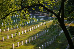 Headstone Rows Royalty Free Stock Images