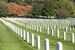 Headstone rows at Arlington National Cemetery, Royalty Free Stock Photo