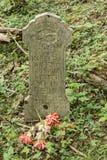 Headstone w Zaniechanym cmentarzu Zdjęcie Stock