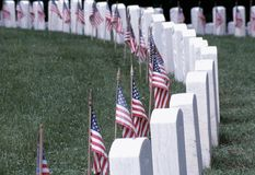 Headstones with American Flags. Photograph of military cemetery with headstones with American flags commemorating Veterans day Royalty Free Stock Image