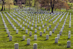 Headstones at Arlington National Cemetery Royalty Free Stock Images