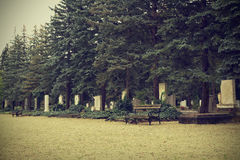 Headstones in cemetery Royalty Free Stock Photos