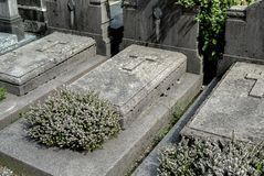 The Headstones and Graves of catholic Cemetery.  stock photo