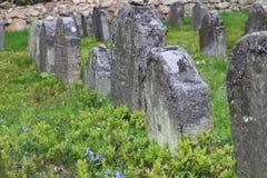 Headstones na Żydowskim cmentarzu w OlÅ ¡ jakaś blisko JindÅ™ichuv Hradec Obraz Stock
