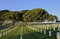 Headstones in a National Cemetery. The white headstones in a National Cemetery honor veteran soldiers who have given their life Royalty Free Stock Images