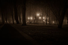 Headstones at graveyard. Night at the graveyard in the small town in Poland royalty free stock image