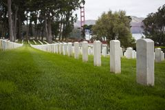 Headstones. A row of white headstones in San Francisco cemetery royalty free stock photo