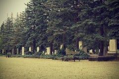 Headstones w cmentarzu Zdjęcia Royalty Free