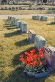 Headstones w Montreal cmentarzu Fotografia Royalty Free