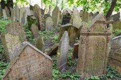 Headstones w Żydowskim cmentarzu w Praga republika czech Obrazy Royalty Free