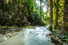Headstream in  buatong waterfall national park  chaingmai Thaila Stock Photo
