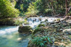 Headwaters, the river in tropical forests Royalty Free Stock Images