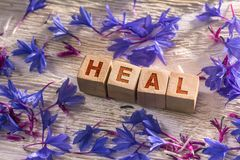 Heal on the wooden cubes. Heal written on the wooden cubes with blue flowers on white wood stock image