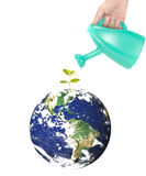 Heal the world. Concept with young plant and world Stock Images