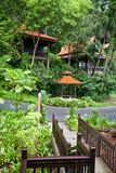 Healh resort in rainforest. Ecotourism. Healh resort in green rainforest. Ecotourism royalty free stock photography