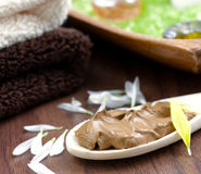 Healing earth. On wooden spoon Stock Image