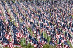 Healing Field on 09-11-2010 Stock Images