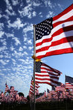 Healing Field Royalty Free Stock Photography
