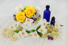 Healing Flowers and Herbs Royalty Free Stock Image