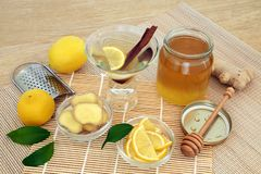 Healing Flu and Cold Remedy Ingredients royalty free stock images