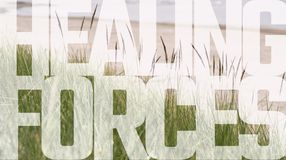 Healing forces concept. Healing forces phrase placed over calm summer landscape Stock Images