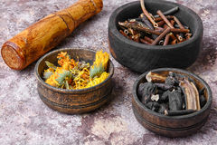 Healing gathering roots and herb Stock Photo