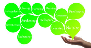 Healing hand with light green healing energy. Colour Therapy - Light Green healing energy Royalty Free Stock Photos