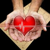 Healing hands. Cupped man's hands hold a heart with an ekg line and an EKG print out in background stock photo