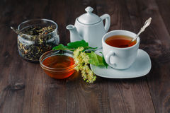 Healing herbal tea with Linden blossom and cookies stock photos