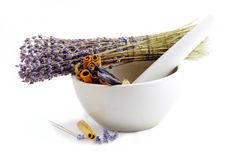 Healing herbs Stock Photos