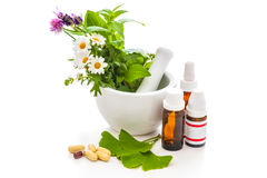 Healing herbs and amortar. Royalty Free Stock Images