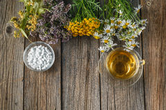 Healing herbs and bowl of pills on wooden table Royalty Free Stock Images