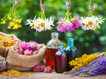 Free Healing Herbs Bunches, Bottle Of Tincture,  Bags Wih Dried Plants Royalty Free Stock Photos - 56275328