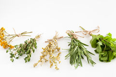 Healing herbs bunches on white. Stock Photo