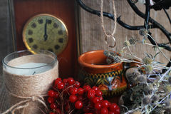 Healing herbs, divination Stock Photography
