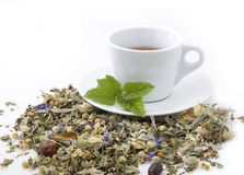 Healing herbs and edible flowers. Cup of tea Royalty Free Stock Photo
