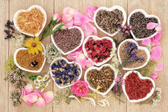 Healing Herbs and Flowers Stock Photography