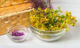 Healing herbs Royalty Free Stock Photo