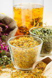 Healing herbs and healthy tea Royalty Free Stock Photos