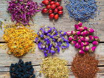 Healing herbs and herbal tea assortment and berries on table. Stock Images