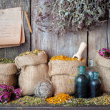 Healing herbs in hessian bags, bottles and paper sheet Royalty Free Stock Photo