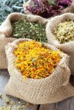 Healing herbs in hessian bags, herbal medicine. Royalty Free Stock Photography