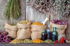 Free Healing Herbs In Hessian Bags And Bottles Of Essential Oil Royalty Free Stock Photo - 50094495