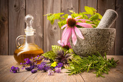 Healing herbs. With mortar and bottle of essential oil on wood stock photos