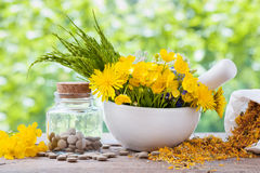 Healing herbs in mortar and bottle with pills Stock Images
