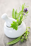 Healing herbs in mortar and pestle royalty free stock photo