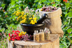 Healing herbs in mortar and in sack stock image
